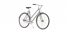 Erenpreiss Sparrow Lady 2-speed